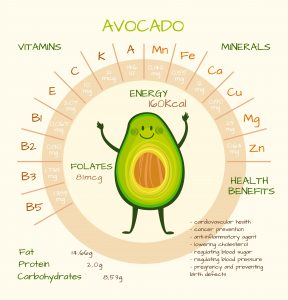 infographic on nutrients in avocados